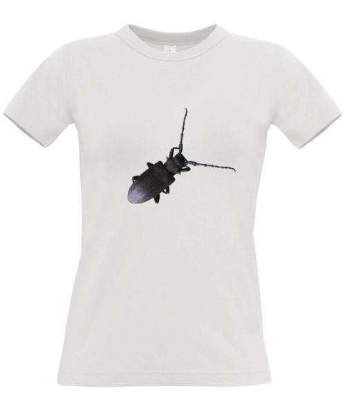 T-shirt with a bug