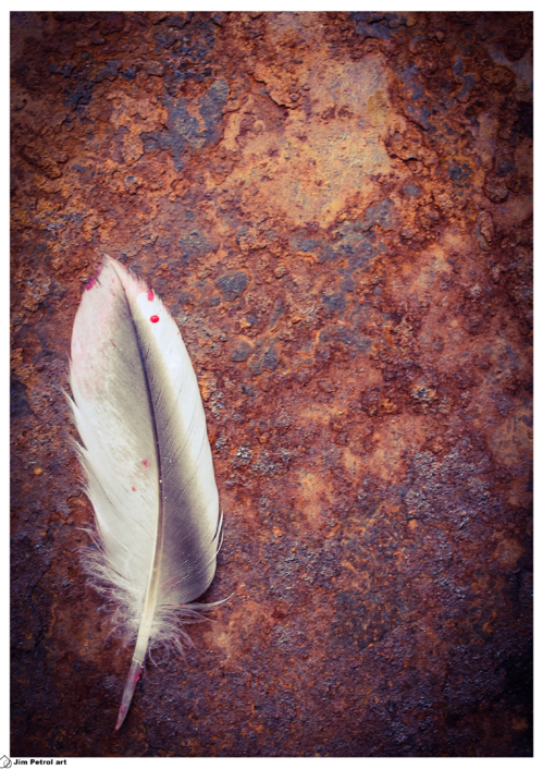 Feather and rust 001 - small