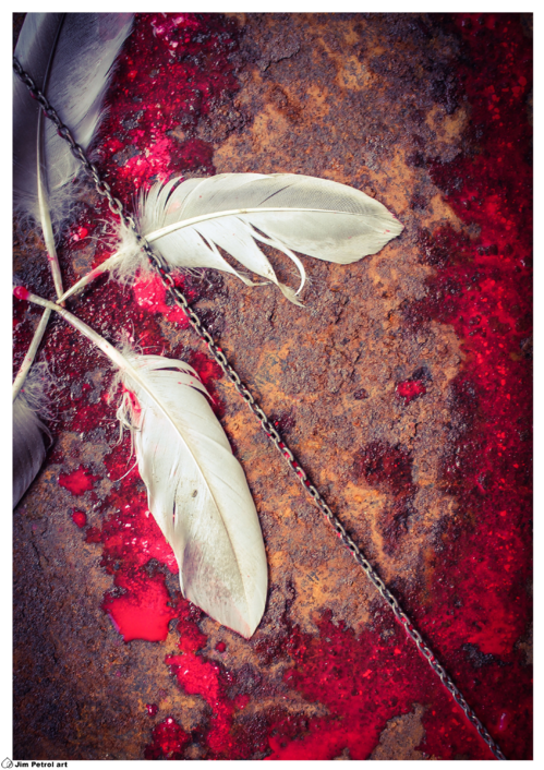 Feather and rust 002 - small
