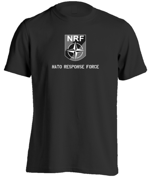 Nato Response Force model Echo